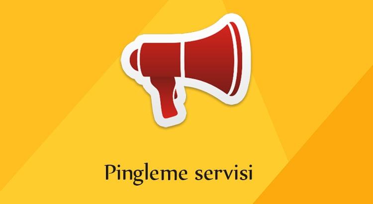 ücretsiz pingleme siteleri